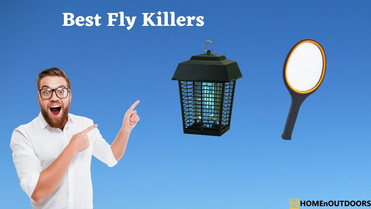 Best-Fly-Killers