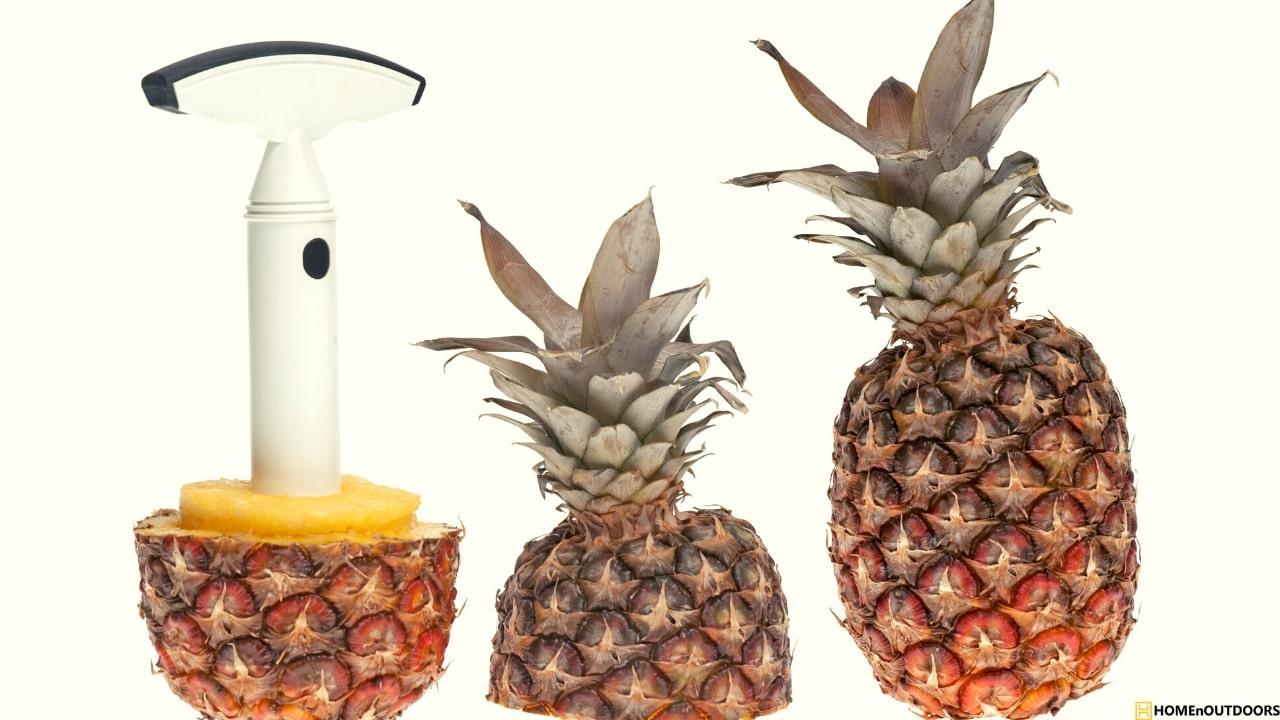 best-Pineapple-Cutter