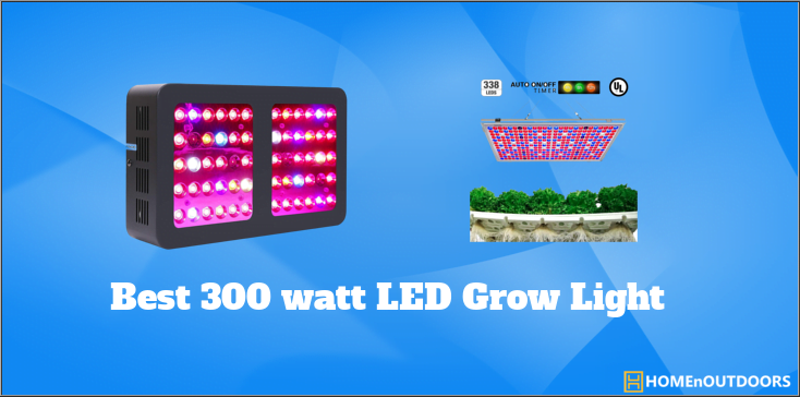Best 300 watt led grow light