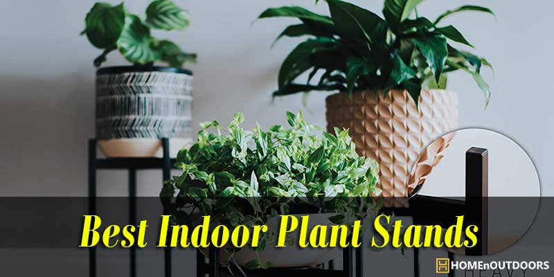 Best Indoor Plant Stands