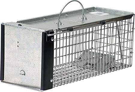 Havahart 0745 One-Door Animal Trap