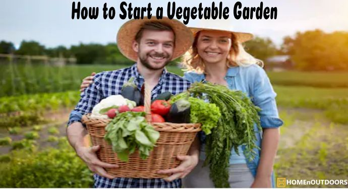 How to Start a Vegetable Garden (2)