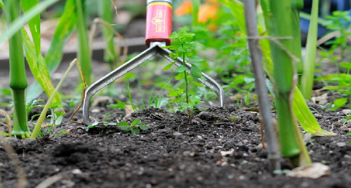 Keeping weeds and pests out